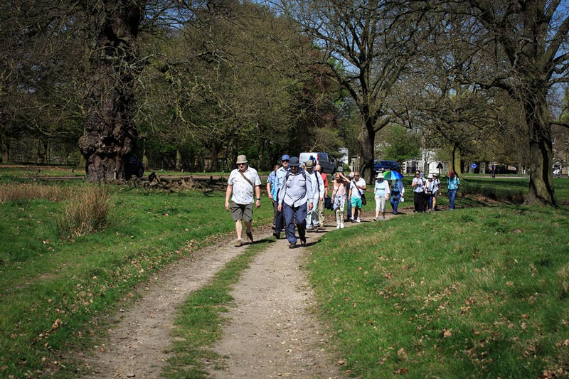 Walking Group at The Avenue Club, Kew